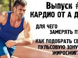 09.-Kardiotrenirovki-ot-A-do-YA.-Dlya-chego-zameryat-puls-Podbor-pulsa-dlya-zhiroszhiganiya