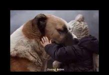 Podborka-UBOJNYE-SPORTIVNYE-PRIKOLY-I-NEUDACHI-Funny-Sport