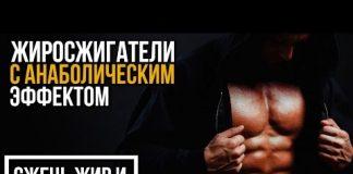 ZHIROSZHIGATELI-S-ANABOLICHESKIM-EFFEKTOM-Klenbuterol-L-Karnitin-YAntarnaya-kislota